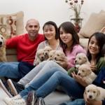 Stock-FamilyWithDogs